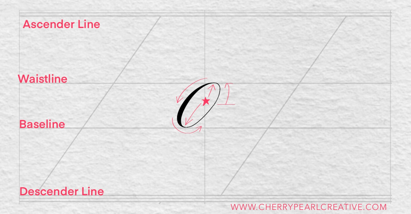 The Oval - Basic Calligraphy Strokes